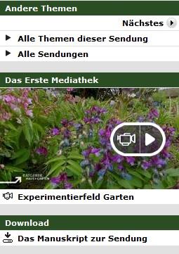 Iris Ney Gartengestaltung