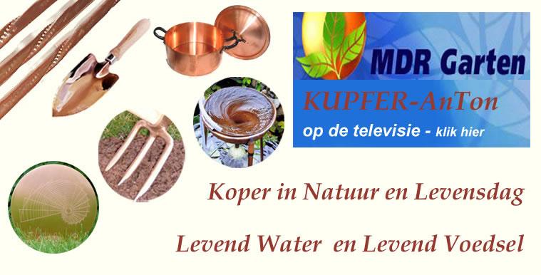 HomeKupferAnton_dutch_tv