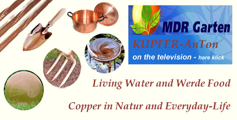 """With copper, we discover the nature"" – english"