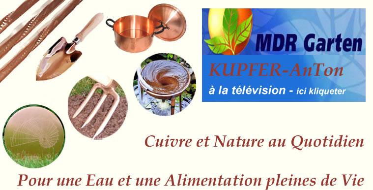 """""""Avec le cuivre, découvrons la nature"""" – french"""